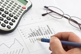 consultant fiscal